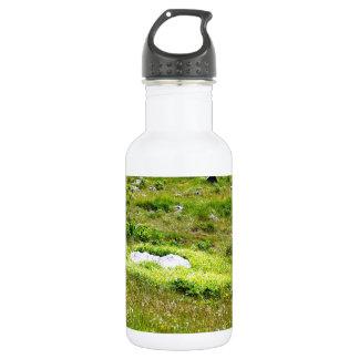 Greenheart Water Bottle