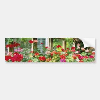 Greenhouse Containing Various Pelargoniums Car Bumper Sticker