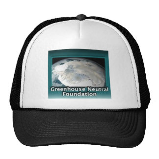 Greenhouse Neutral Foundation Mesh Hat