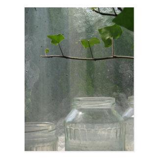 Greenhouse Postcard
