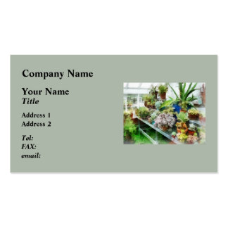 Greenhouse With Cactus Double-Sided Standard Business Cards (Pack Of 100)