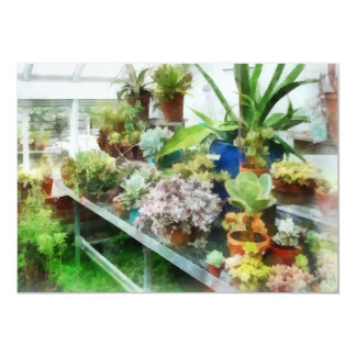 Greenhouse With Cactus Card
