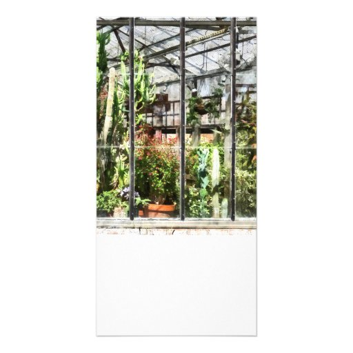 Greenhouse With Large Cactus Customized Photo Card