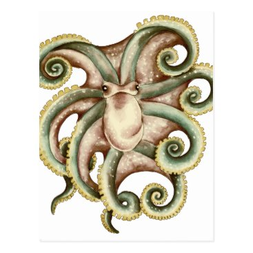 Beach Themed Greenish octopus postcard