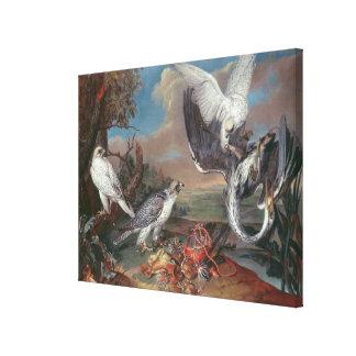 Greenland Cyr Falcons Canvas Print
