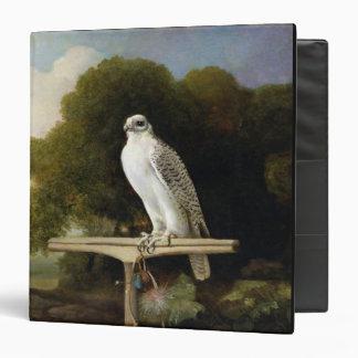 Greenland Falcon (Grey Falcon), 1780 (oil on panel Binder