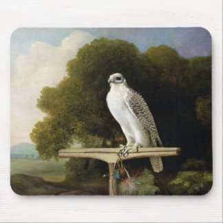 Greenland Falcon (Grey Falcon), 1780 (oil on panel Mouse Pad