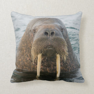 Greenland Sea, Norway, Svalbard Archipelago Pillows