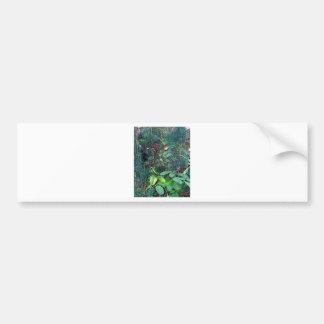 greens bumper sticker