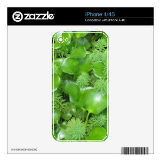Greens Phone Case iPhone 4 Skins