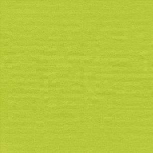 Greensolidpaper Light Lemon Green Solid Color Back Tee
