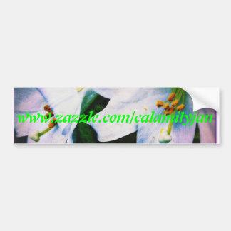 Greentext de la pegatina para el parachoques de lo pegatina de parachoque