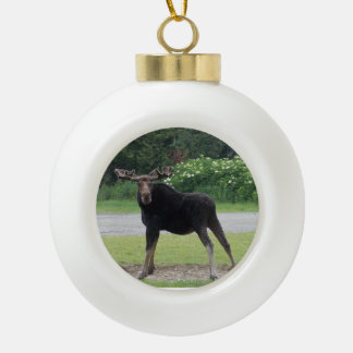 Greenville Moose 1 Ceramic Ball Christmas Ornament