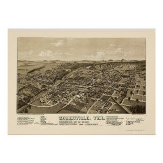Greenville, TX Panoramic Map - 1886 Posters