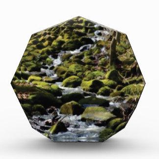 Greenway creek acrylic award