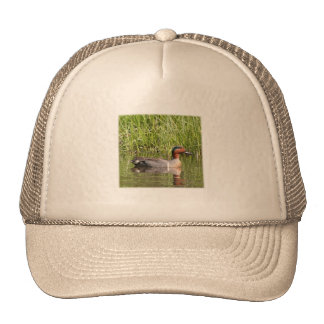 Greenwinged Teal Trucker Hat