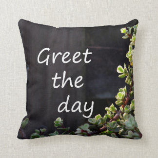 greet the day with baby jade pillow