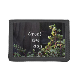 greet the day with baby jade tri-fold wallet