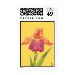 greetcard10 stamp