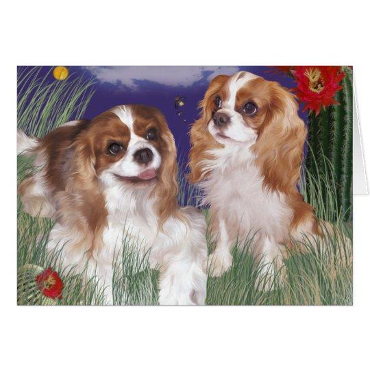 Greeting card, cavalier spaniel twin blenheims card