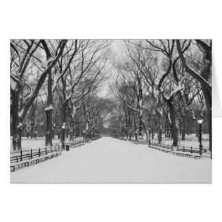 Greeting Card - Central Park after Winter snow, NY