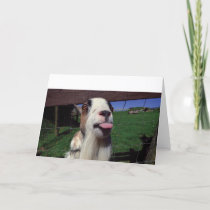 Greeting Card Cheeky Goat