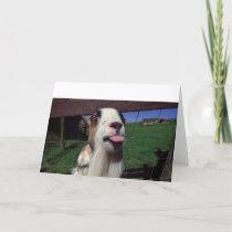 Greeting Card Cheeky Goat
