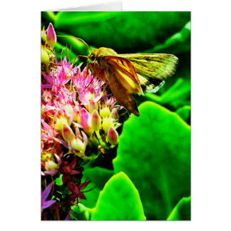 Greeting Card from the Nature Erotica Collection