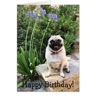 Greeting card: Happy Birthday! Card