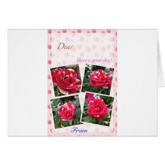 Greeting card of pink roses
