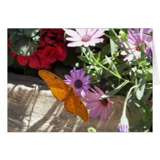 greeting card with orange butterfly and flowers
