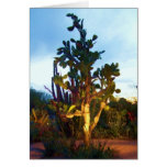 greeting card with prickly pear cactus tree