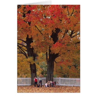 GREETING CARDS   KIDS AND LEAVES