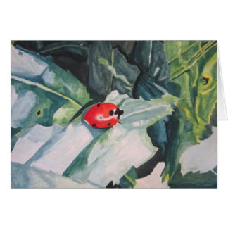 """Greeting Cards with """"Ladybug"""" by Amber Larsen"""