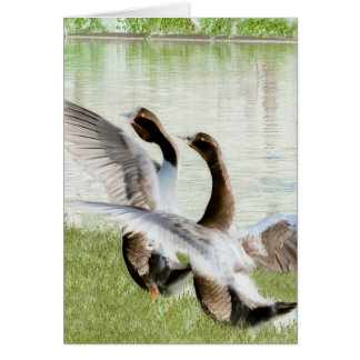 Greeting Geese Card