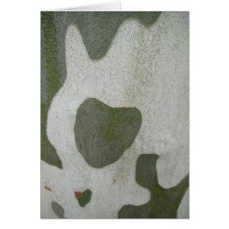 Greeting map grey-green heart on bark, in blank card