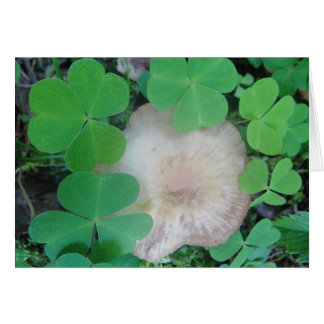 Greeting map mushroom with clover sheet ring card