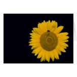 Greeting map sunflower card