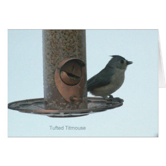 Greeting or Note Card with tufted titmouse