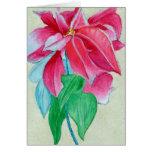 greetingcardpoinsettia greeting card