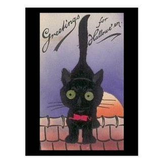 Greetings For Halloween Vintage Cat Postcard