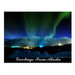 Greetings From Alaska Aurora Postcard