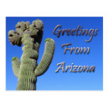 Greetings From Arizona Post Card