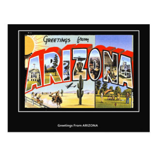 Greetings from Arizona Vintage postcard Postcards
