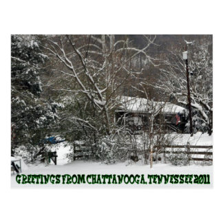 Greetings From Chattanooga, TN   2011 Postcard