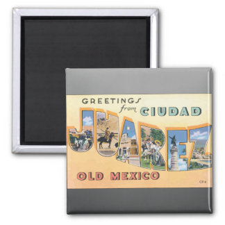 Greetings From Ciudad Juarez Old Mexico, Vintage 2 Inch Square Magnet