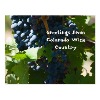 Greetings from Colorado Wine Country Postcard