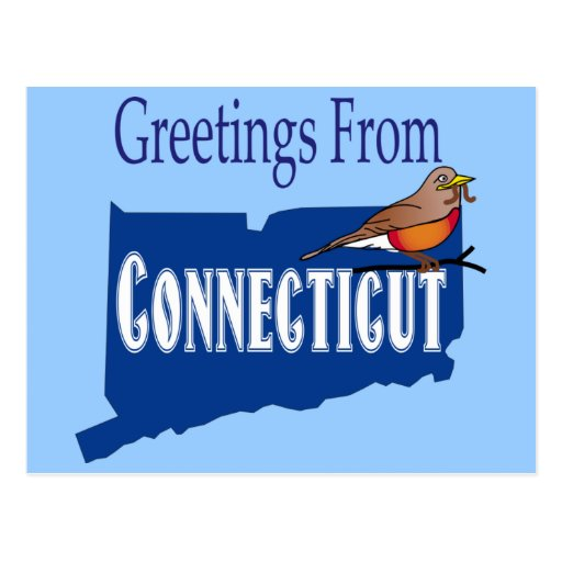 Greetings From Connecticut American Robin State Postcard