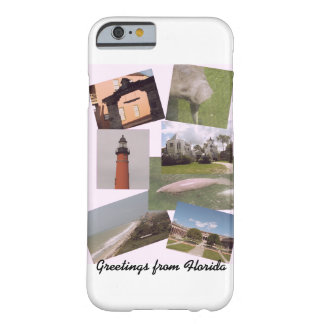Greetings from Florida Barely There iPhone 6 Case