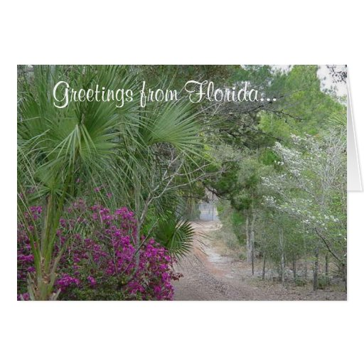 Greetings from Florida... Greeting Card